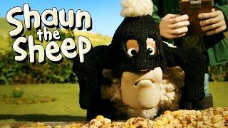 Buronan [Wanted]   Shaun the Sheep   Full Episode   Funny Cartoons For Kids
