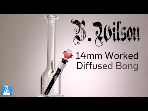B. Wilson Glass 14mm Worked Diffused Bong