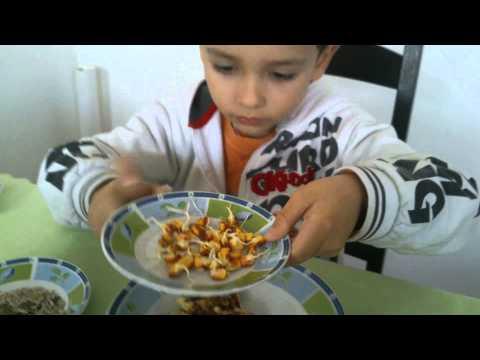 Малиот Марко Миленковски ќе ве научи како се подготвува здрав оброк кој треба да го јадат сите деца