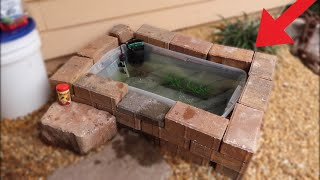 Remodeling ULTIMATE UNDERGROUND BAIT TANK!