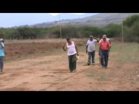 JUEGOS DE PELOTA LA LABOR vs AMATENGO