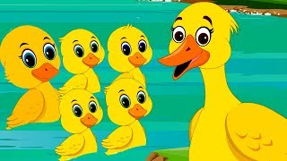 Five Little Ducks in Hindi | पाँच छोटे बत्तख | Best Hindi Rhymes | Hindi Balgeet | Kids Tv India