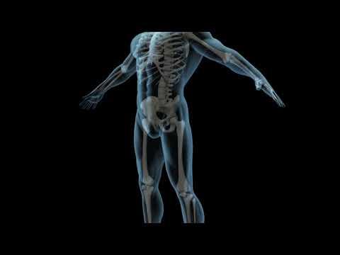Spine Surgery