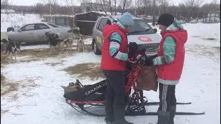 В Омске стартовали соревнования по ездовому спорту