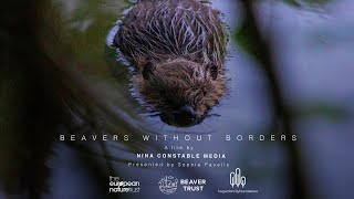 Beavers Without Borders: a short documentary