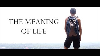 The Meaning of Life (Short Film)