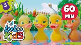 Five Little Ducks - Great Educational Songs for Children | LooLoo Kids