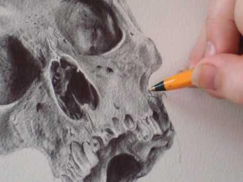 Baixar Stop Motion Drawing 2:  Sugar Skull by Paul Alexander Thornton