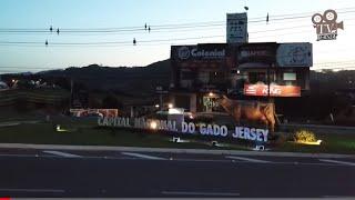 Braço do Norte/SC - A Capital Nacional do Gado Jersey no Brasil - TV Jersey