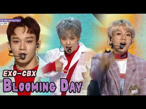 [HOT] EXO-CBX - Blooming Day, 엑소-첸백시 - 花요일 Show Music core 20180421