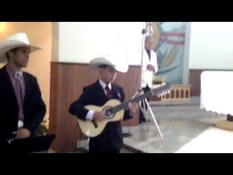 Baixar Gustavo violeiro tocando a Marcha Nupcial na viola