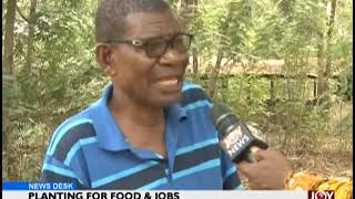 Planting For Food & Jobs - News Desk on JoyNews (22-1-19)