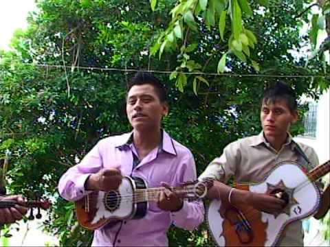 Mi pequeña fragil con el trio Los Paseadores de la Sierra por Video Tauro de Isidro El Pozo Pantepec