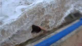 Случай на пляже Сардинеро в Испании