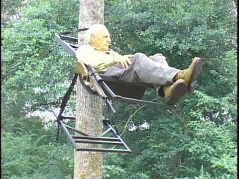 Tree Lounge Comfort Youtube