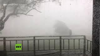 Un fuerte tornado a su paso por un rancho en Texas (EE.UU.)