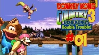GAME OVER: DONKEY KONG COUNTRY 3 - VIDEOS DE DONKEY KONG ...