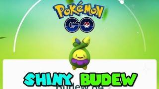 SHINY BUDEW IN POKEMON GO - POKEMON GO GEN 4