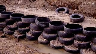 Экологический заповедник превращается в свалку токсичных отходов
