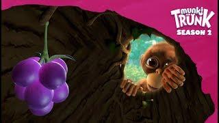 Munki's Trunk – Munki and Trunk Season 2 #13