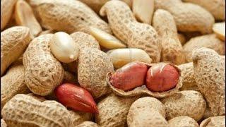 Công dụng của đậu phộng - 12 lợi ích chữa bệnh tuyệt vời của lạc (đậu phộng)