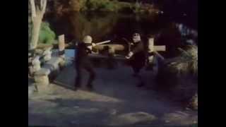 The Master: Ninja Fight 04