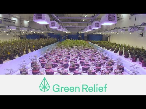 VIDEO - A tour of the Green Relief facility.