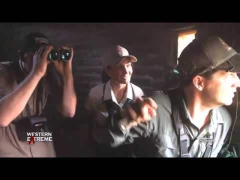 Hunting Legends bowhunting Waterbuck