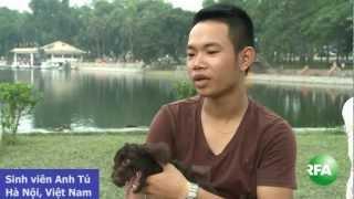 Chuyện nuôi chó và ăn thịt chó ở VN