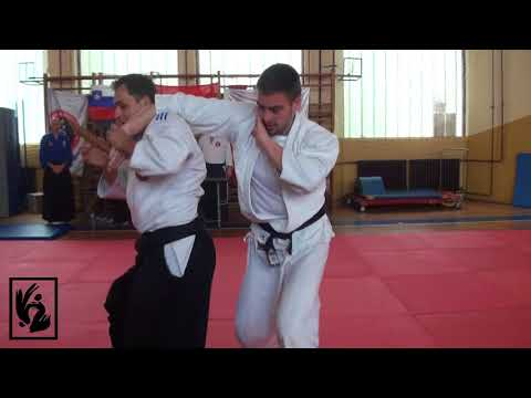 Medjunarodni aikido seminar NIS 2018
