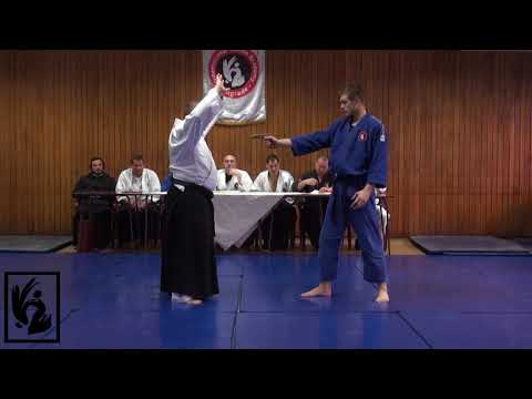 Medjunarodni aikido seminar sa Bratislavom Stajicem - 8. Uchideshi