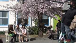 10年桜メイキング