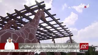 علوم الدار | سفاري دبي تشهد افتتاح تجريبي     -