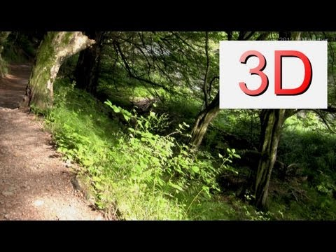 3D Video: River & Forest Relaxation #9