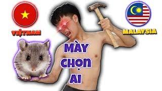 Tony | Động Vật Dự Đoán Bóng Đá Việt Nam VS Malaysia -  Prophet With Animals