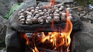 Survival skills: Cooking Oyster on the rock with peppers sauce for eat delicious #80