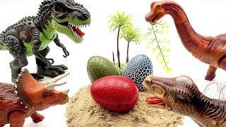 Jurassic World2 Dinosaur Born in Dinosaur Eggs~ Who's Dinosaur Eggs? Fun Video For Kids