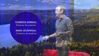 Por que cada um de nós precisa plantar duas árvores por ano? | Ricardo Anderáos | TEDxSaoPaulo