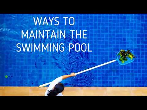 Ways To Maintain Swimming Pools