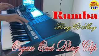 Xuân Khỏe Đàn Organ Hòa Tấu Rumba Cực Hay | Nhạc Phòng Trà VIP