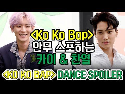 'KO KO BOP' EXO KAI & CHANYEOL's Dance Spoiler 안무 스포하는 엑소 카이 & 찬열 (170718 EXO Press Conference)
