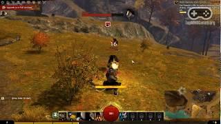 Геймплей Guild Wars 2 / Гилд Варс 2