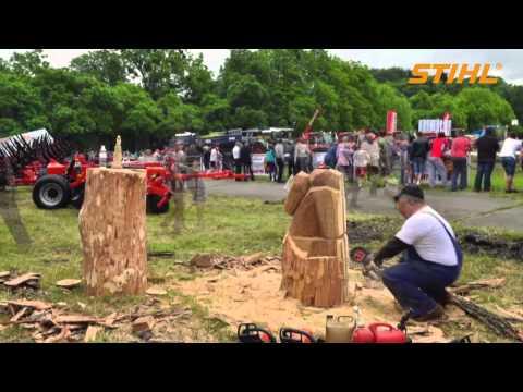 Создание деревянной скульптуры на Астра-Шоу
