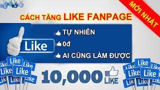Hướng dẫn cách TĂNG LIKE fanpage facebook  ĐÚNG ĐỐI TƯỢNG ai cũng làm được nhanh miễn phí [mới nhất]