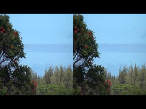 3D Video extreme!!! (evo 3D Works) 3D Video Hawaii Nature Scene