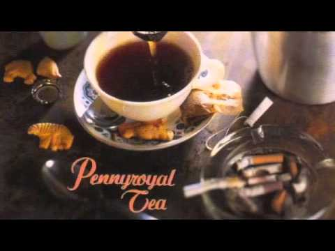 Nirvana - Pennyroyal Tea single [Full]