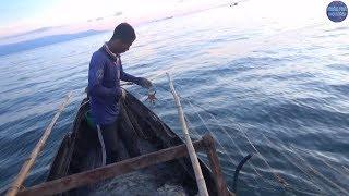 Lên lưới ghẹ lúc rạng sáng/Fishermen catch crabs