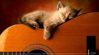3 HOURS Relaxing Guitar Music  Instrumental Music, Calming Music, Soft Music, Sleep Music