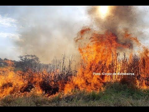 Focos de incêndio aumentam com estiagem prolongada