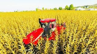 Literally Filling the Entire World with Corn - Farming Simulator 19
